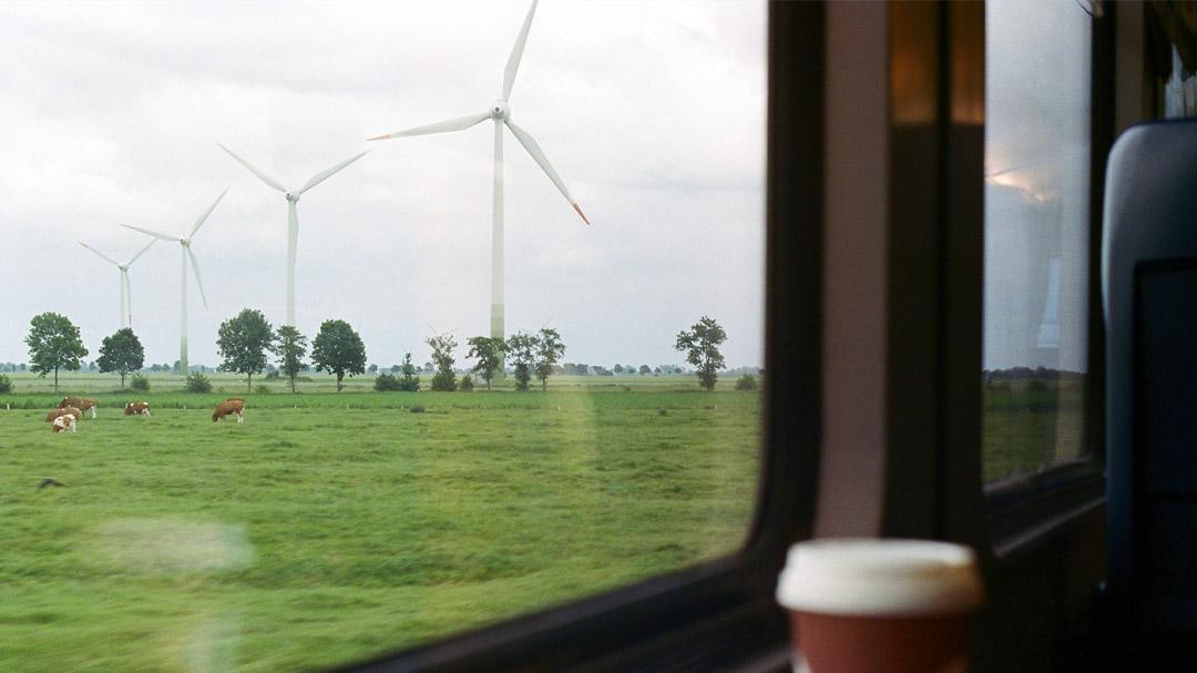 Blcik aus fahrenden Zug, Wiese, Kühe und Windräder