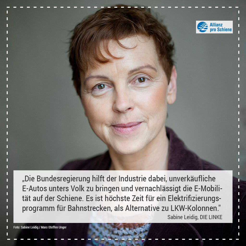 Elektrifizierung Sabine Leidig, DIE LINKE