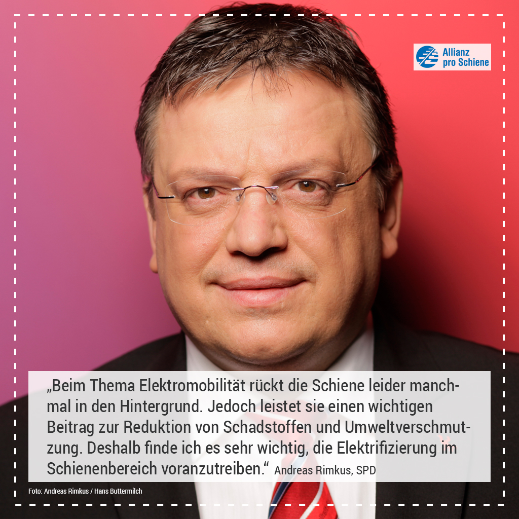 Elektrifizierung Andreas Rimkus, SPD