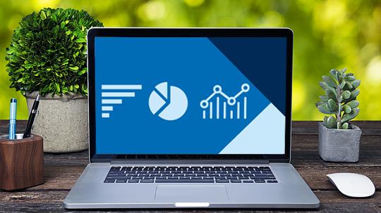 Allianz pro Schiene Daten & Fakten
